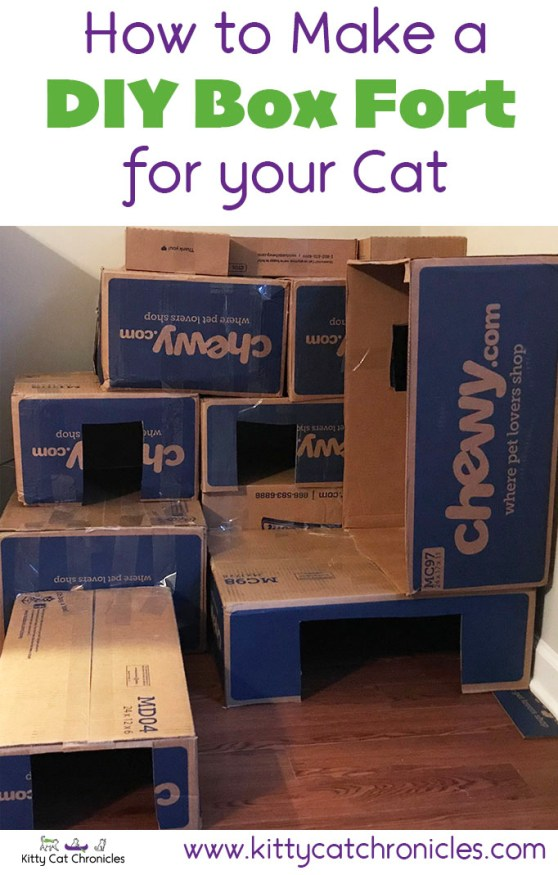 How to Make a Cardboard Box Fort for Your Cat!