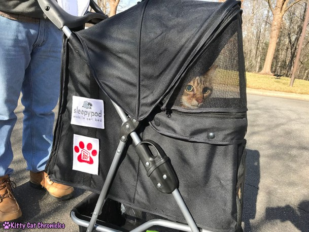 The KCC Adventure Team in Asheville: The North Carolina Arboretum - Caster in stroller