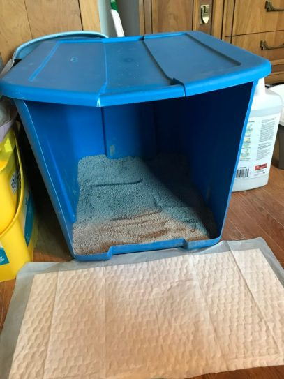 Mr. Wobbles - custom litter box for CH cat