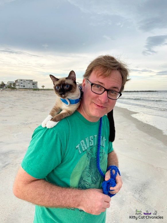 cat riding on shoulders on the beach