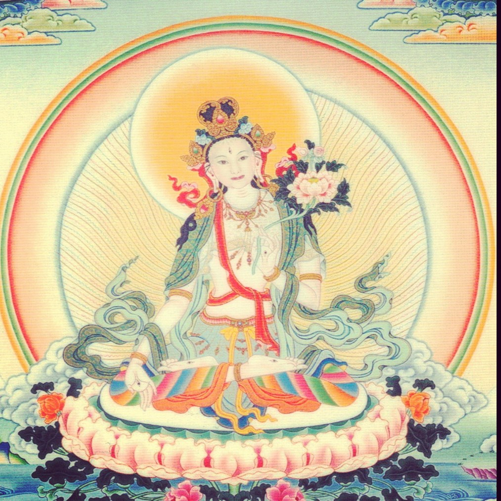 China Rose ~ White Tara Buddha composite, circa 2012
