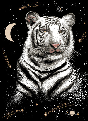 Magic Tiger art