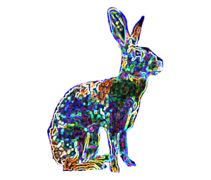 Night Star Hare