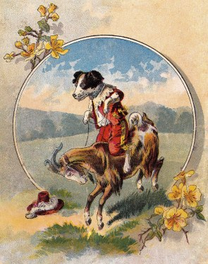 Dog Riding a Goat | vintage card