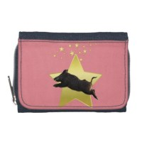 KittySol Pig Star | wallet