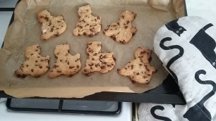 Choc Chip Kitty Cookies!