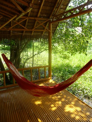 Our hammock, perfect for lounging