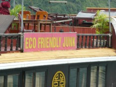 """""""Eco friendly junk"""" - anybody want some?"""