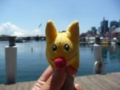 Calvin in Darling Harbor