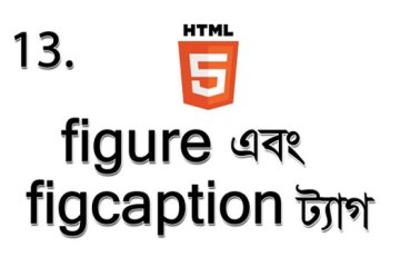 figre and figcaption