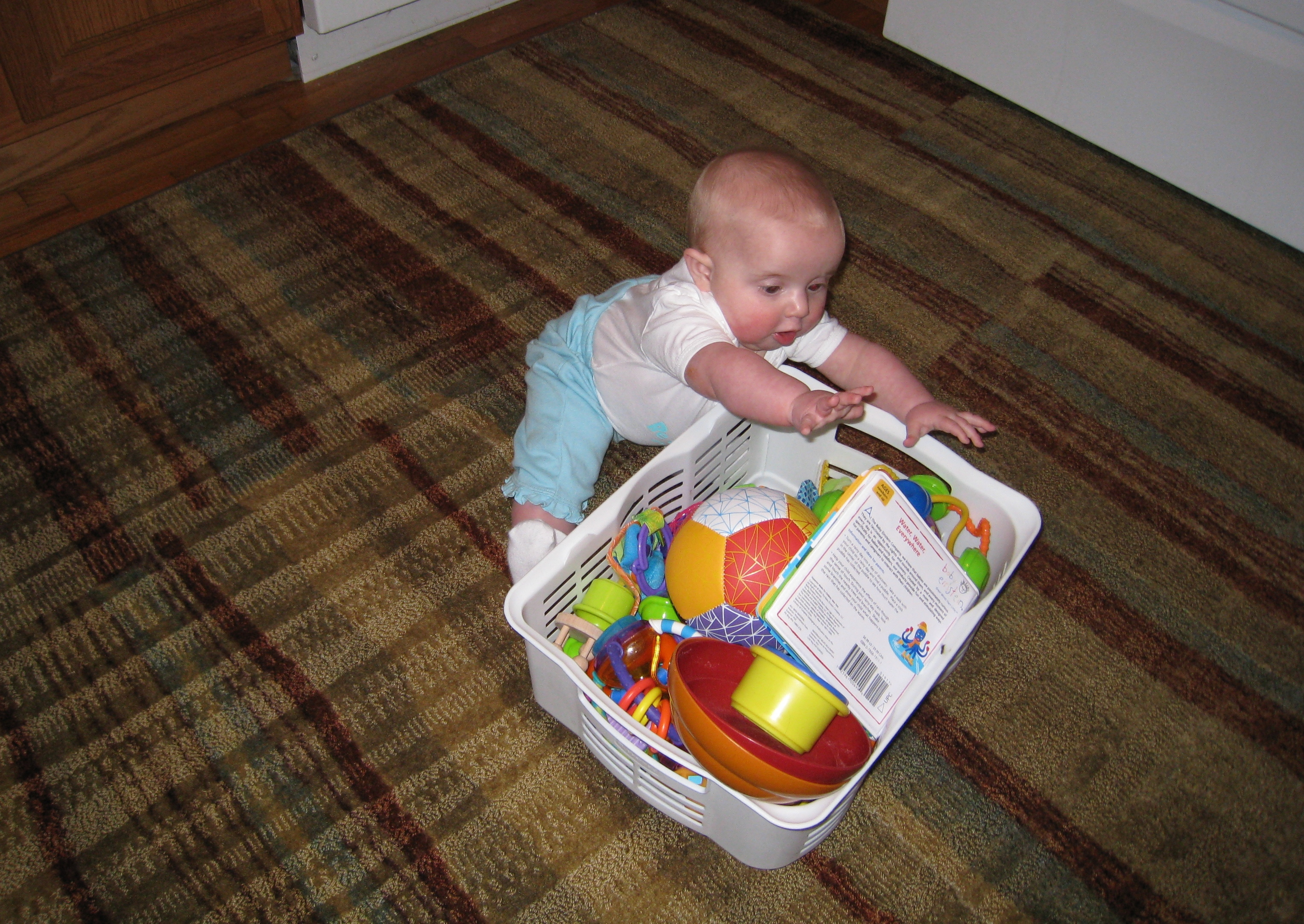 the-toy-basket