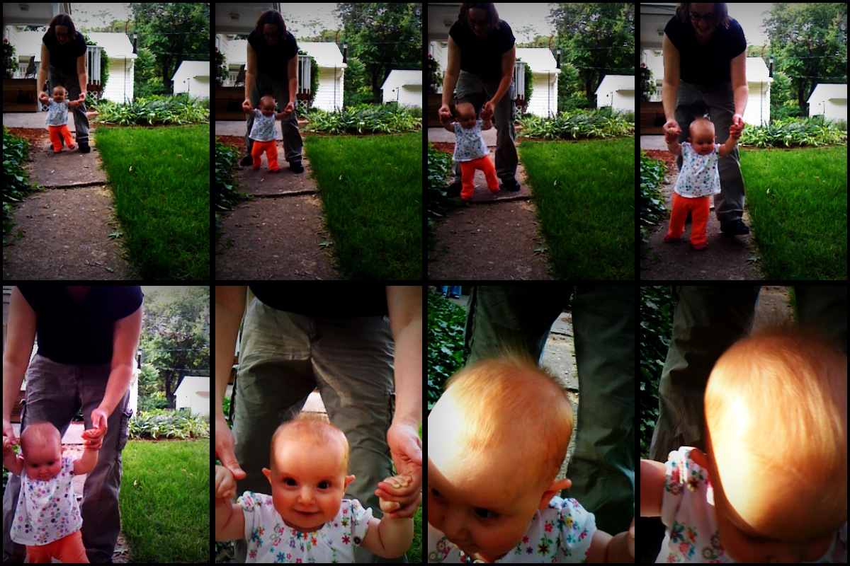quadcam walking