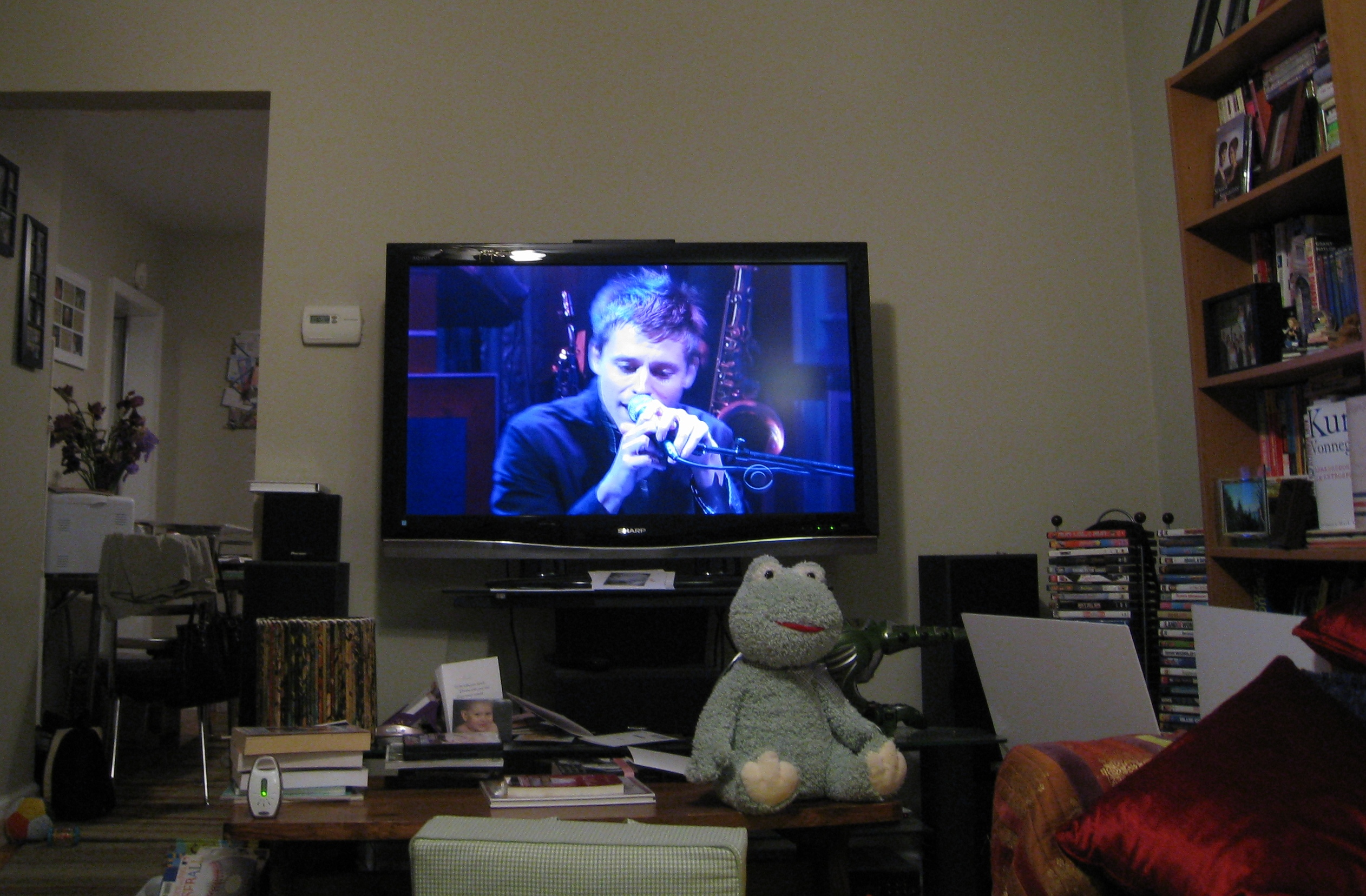 stephen patterson on letterman with the white rabbits
