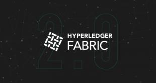 Hyperledger Fabric Hits v2.0