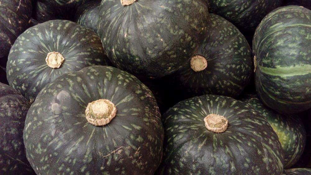 """「かぼちゃ」は英語で """"pumpkin"""" ではないって本当?"""
