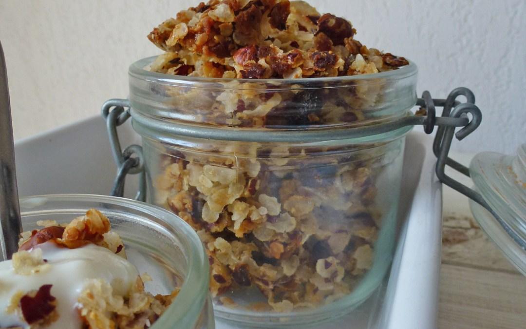 Un granola maison aux noisettes… ( vegan, sans gluten )