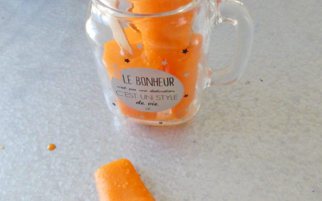 Popsicles, sorbet orange carotte sans sucre ajouté