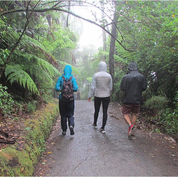 Maunganui Walking