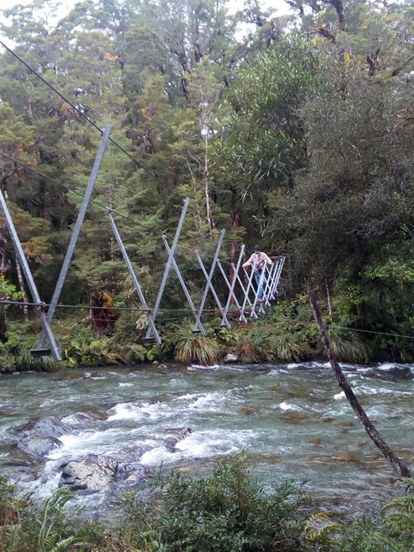 best bridge new zealand