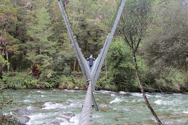 Puente Nueva Zelanda