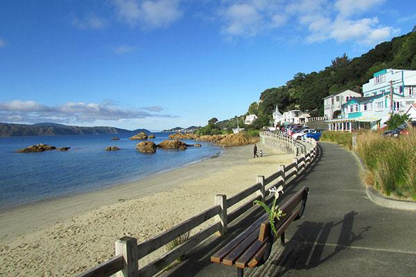 Wellington costa