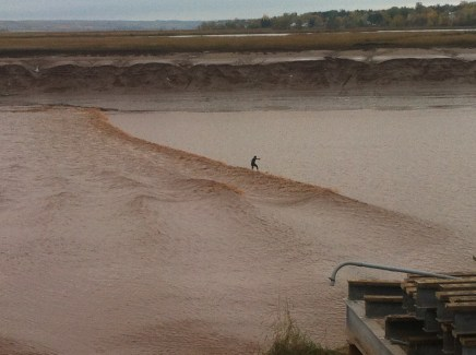 Surfing the Moncton tidal bore