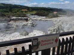 Hot mud pools at Hells gate