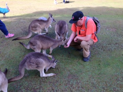 Feeding some forest kangaroos at the Unzoo