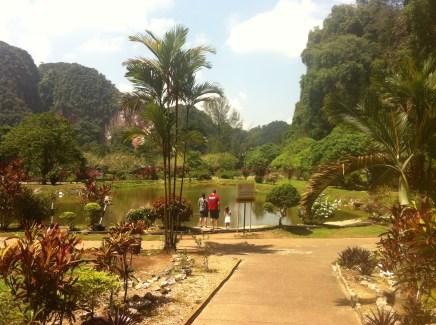 Lovely Zen Garden