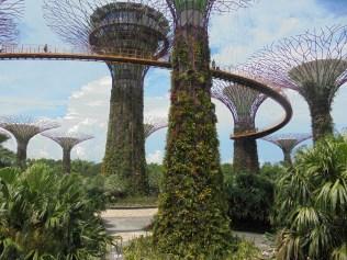 Avatar a tout piqué à Singapour