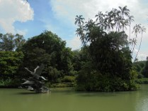 Au jardin botanique, le lac des cygnes