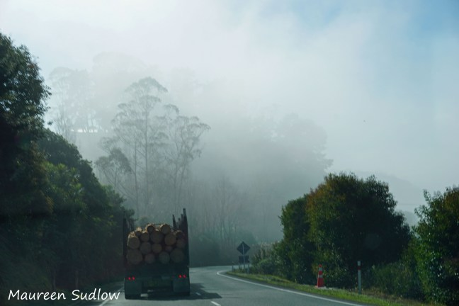 road to Whangarei2
