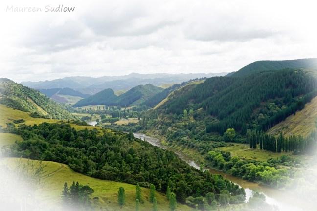 whanganui-river-road