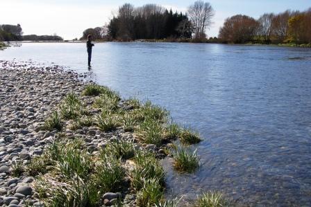 web fisherman in clear waters