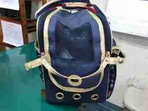 布製キャリーバッグ側面