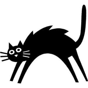 猫 怒り 毛 背中 逆だてる