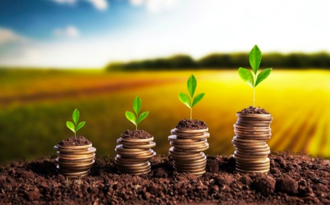 Top 5 Agriculture Business Ideas