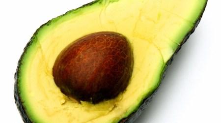 modne avokado