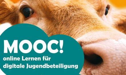 Mooc! Online lernen für digitale Jugendbeteiligung (Ab März 2018 kostenlos auf mooin.oncampus.de)