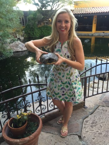 We went to dinner one night at this awesome restaurant in Cave Creek - Tonto... this is the local wildlife escaping.