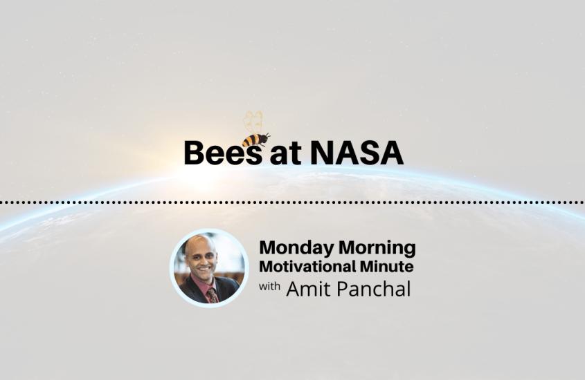 MMMM #6: Bees at NASA