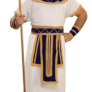 Forum-Novelties-Mens-Ancient-Egypt-Prince-Of-The-Nile-Costume-Multi-Standard-0-1