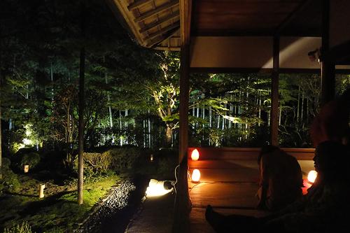 宝泉院庭園ライトアップ4