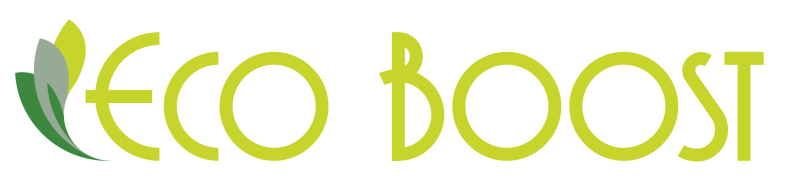Eco Boost Logo