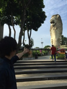 島を一望!マーライオンタワーinシンガポール