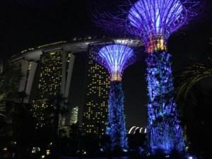 まるでSFの世界のような未来的な植物園