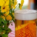マレーシアのビール価格はどれくらい?種類別で比較してみた