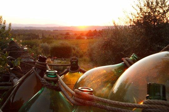 Weinflaschen beim Weingut in der Nahe von Castel Nuevo Beradenga