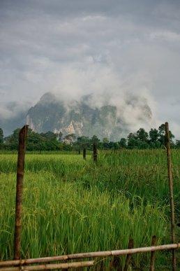 Reisfelder und Karstmassive fruh morgens etwas au?erhalb von Vang Vieng