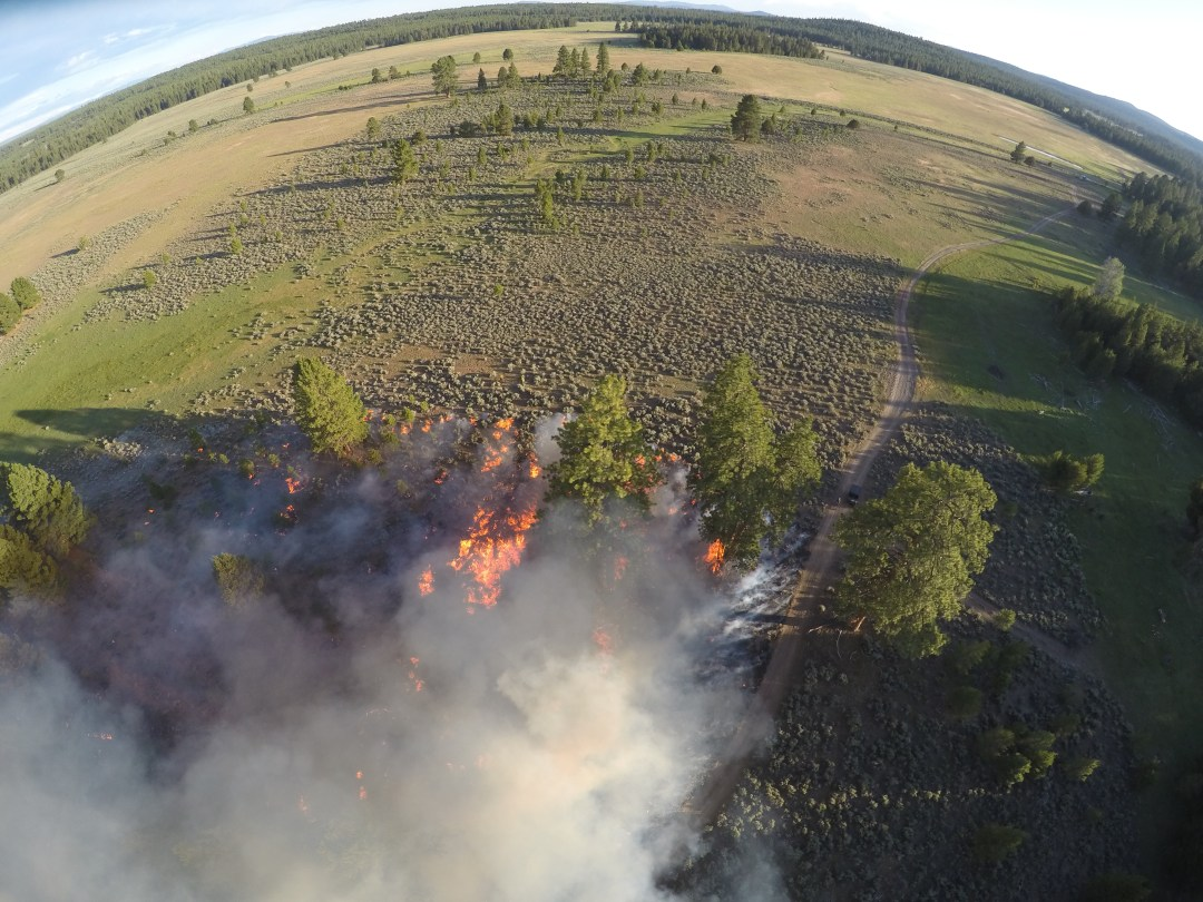Silver Creek Fire.JPG